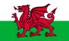 Galles - Talenti Calciatori